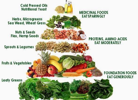Kepentingan Protein Dalam Diet Harian