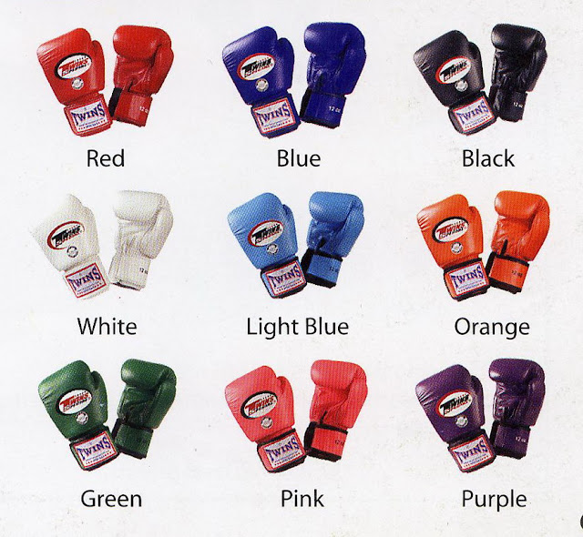 Twins Muay Thai Boxing Gloves5