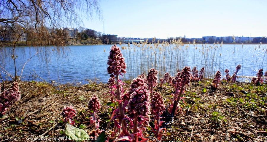 River walk - Helsinki