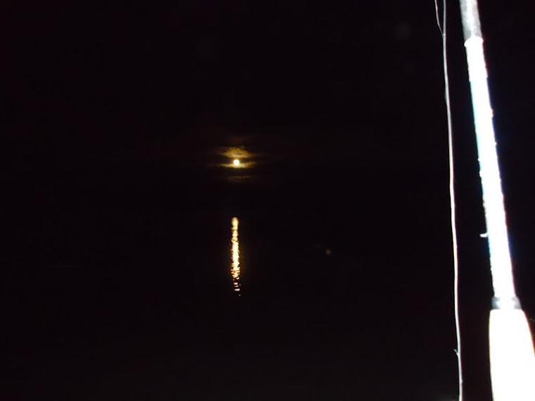A noite veio e a pescaria continua