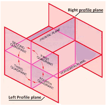 Principal Projection Planes and Quadrants