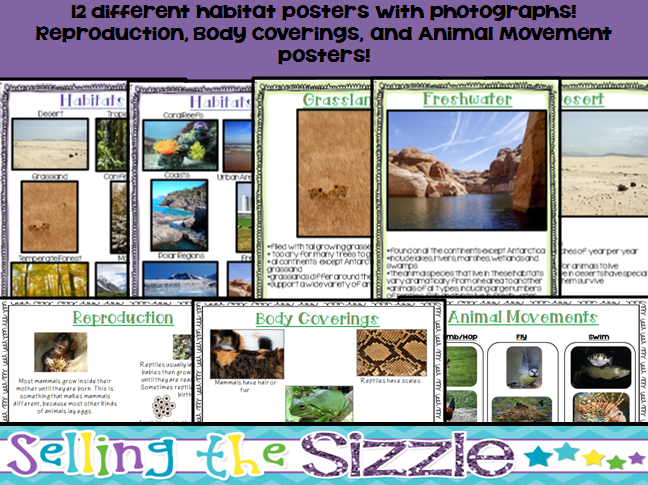 http://www.teacherspayteachers.com/Product/All-About-Animals-CCSS-Aligned-to-teach-about-the-5-Vertebrate-Animal-Groups-1231761