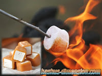 Apa Itu Marshmallow