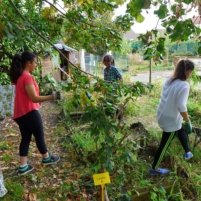Le jardin des g teaux serge mora atelier du 19 septembre for Le jardin 19