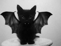 Cat-Dracula