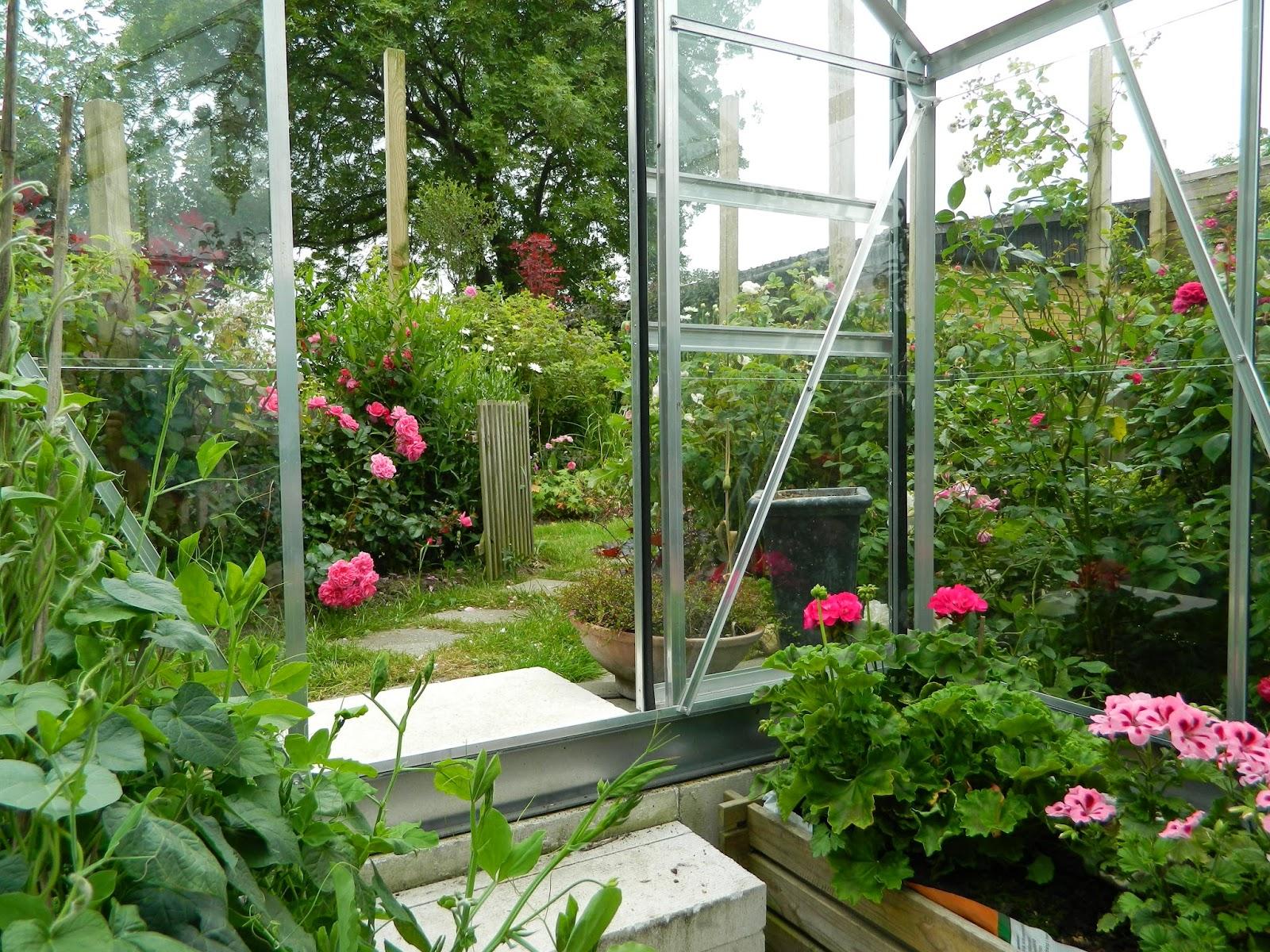 Lad Romantikken Blomstre: Min sommerhave i fuldt flor