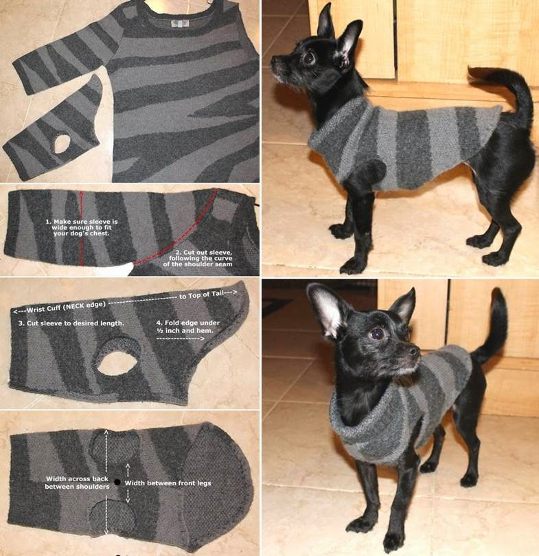 How to Make a Sweater for Your Dog NO SEW