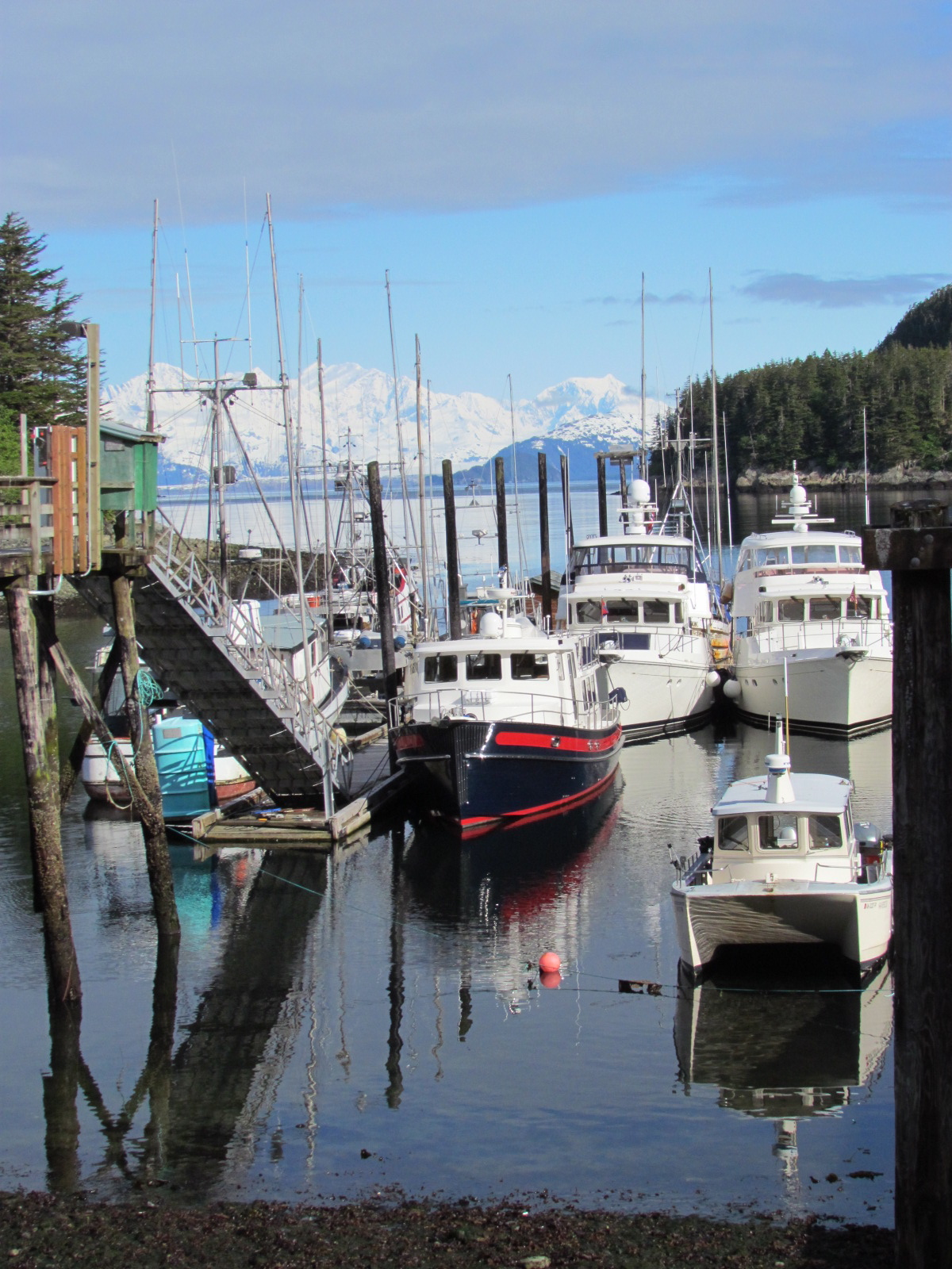 jewish singles in elfin cove Local dogging and swingers in elfin cove, alaska, usa find bi-sexual couples, gay or straight males, dirty sexy girls, hot females, sluts and single transvestites for sex contacts, meets.