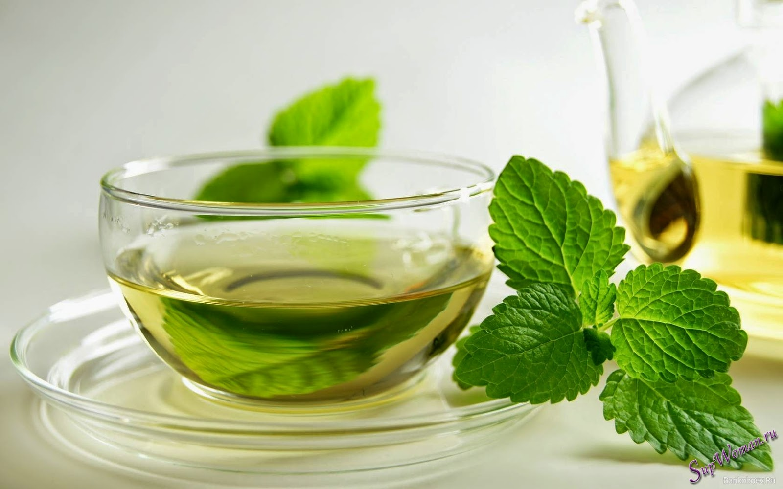 Какой выбрать зеленый чай