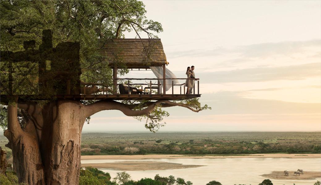 Top 20 beautiful and amazing tree house wallpapers pics - Casas en el arbol ...