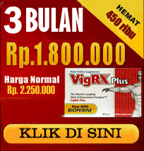 distributor vigrx plus indonesia