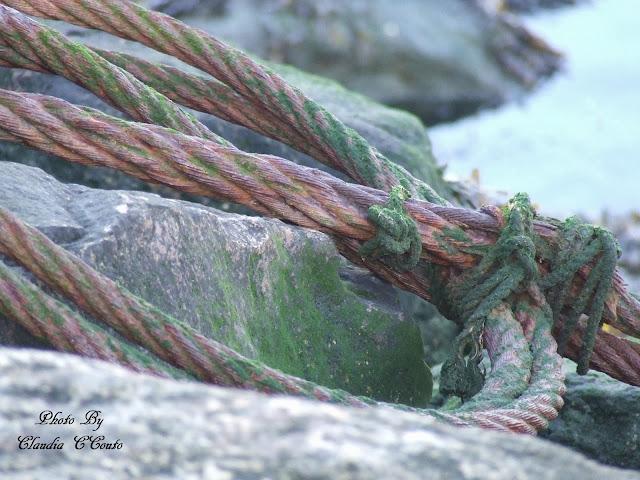 Uma corda poderá representar tantas coisa na nossa vida que por vezes torna-se subjetivo falar de um objeto apenas apara o efeito que é criado.  De fato foi criada para amarrar, prender, segurar mas todas essas palavras se encaixam na nossa vida.