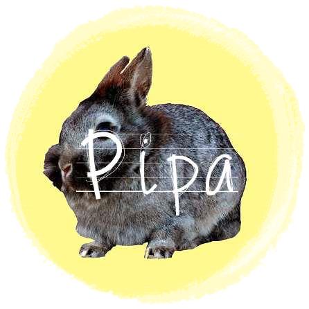 http://rabbitrubbish.blogspot.fi/p/pipa.html
