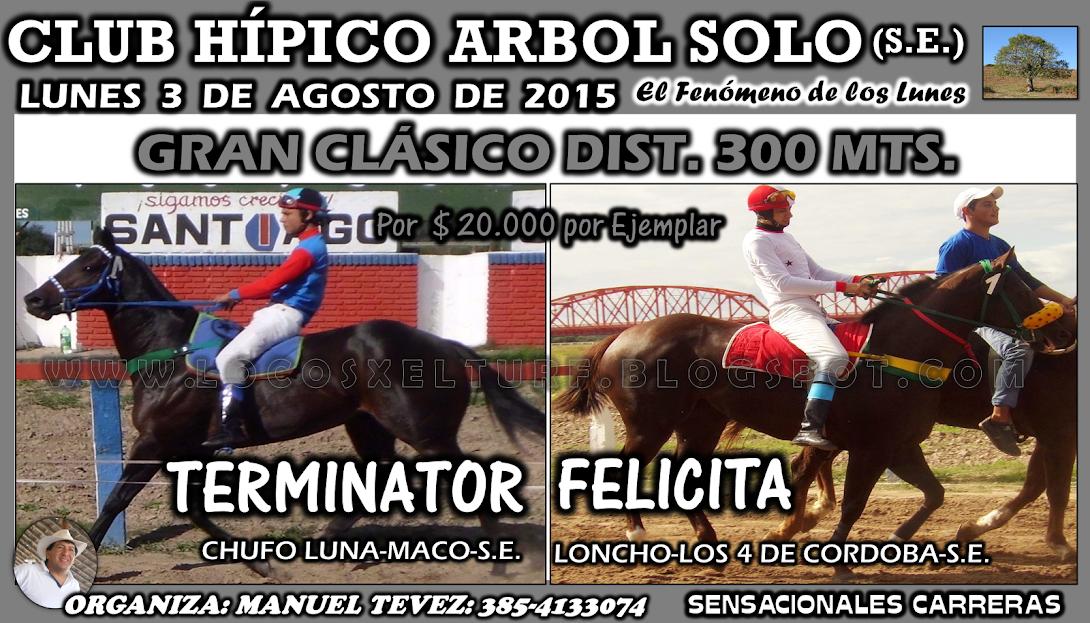 03-08-15-HIP. ARBOL SOLO-CLAS.
