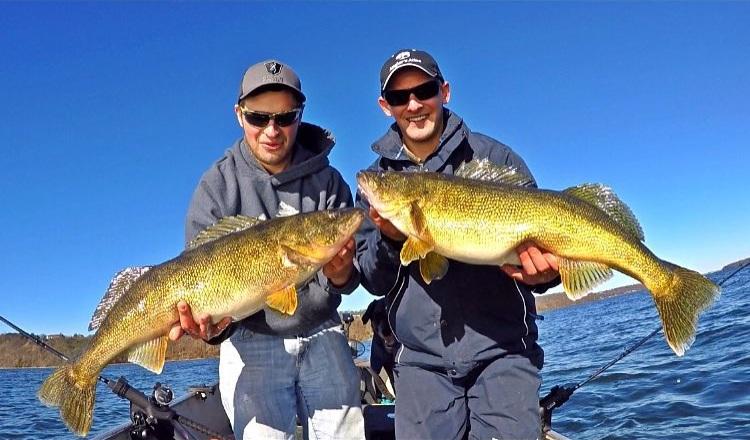Twin 12lb Bay of Quinte Walleye