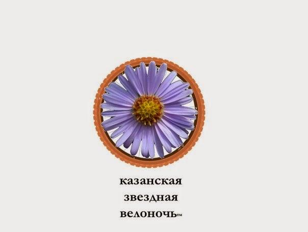 Казанская звездная велоночь