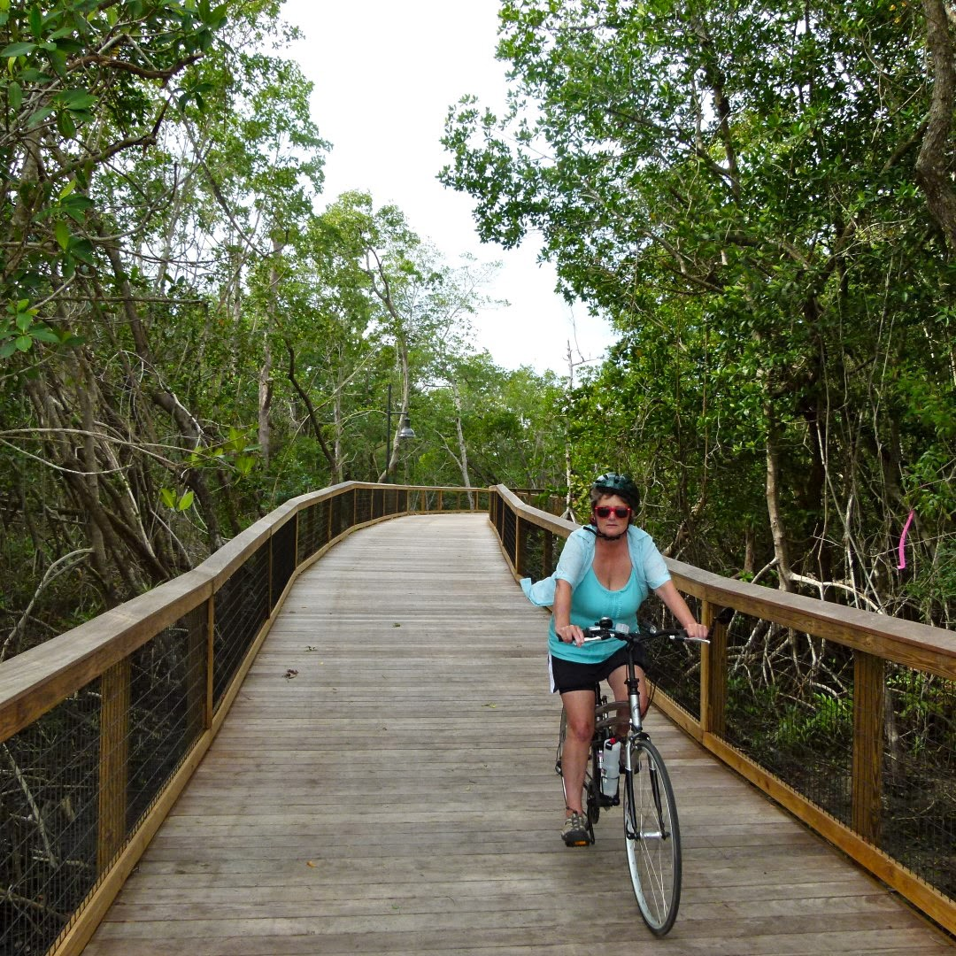 Cycling the Gordon River Trail, Naples Florida