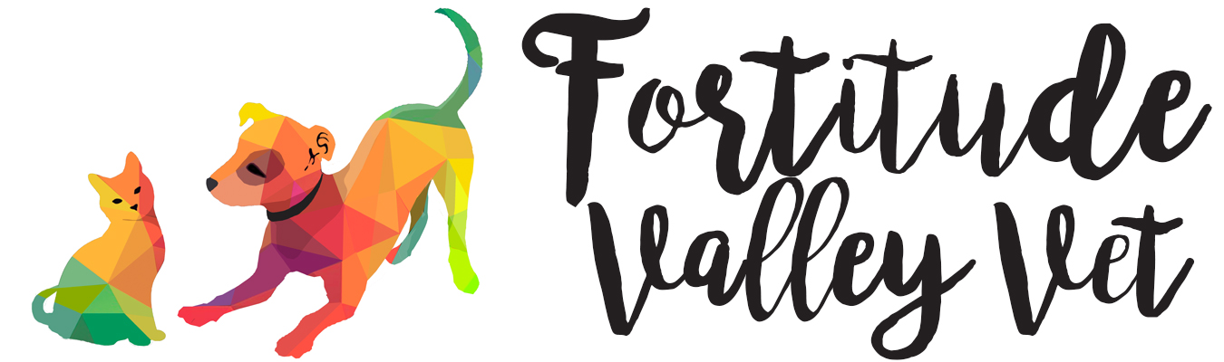 Fortitude Valley Vet - Emporium Pet Shop New Farm Teneriffe Newstead Bowen Hills Brisbane