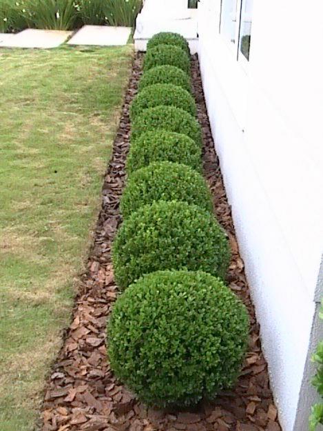 Casa,meu lar;Um projeto de Deus! Jardim! Ahhhh o verde!