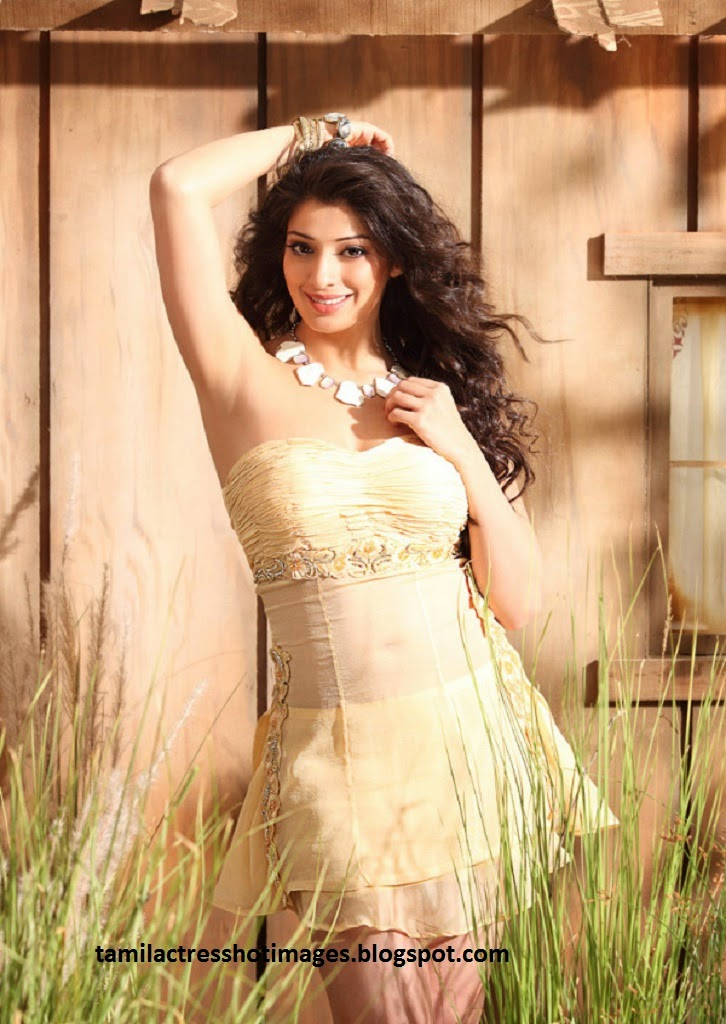 Tamil Actress Hot Photos,Navel Images,Heroine Pictures Actresses
