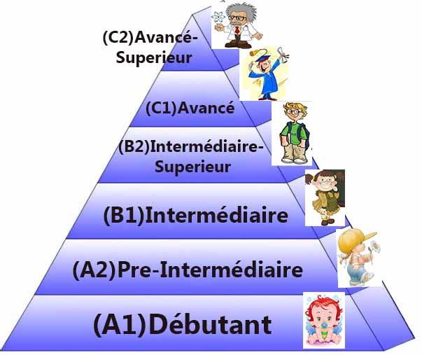 Niveaux de français
