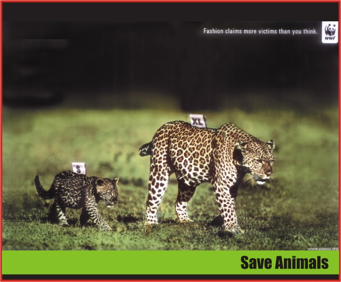 20 Funny and Creative Ads Using Animals  Amazing Creatures