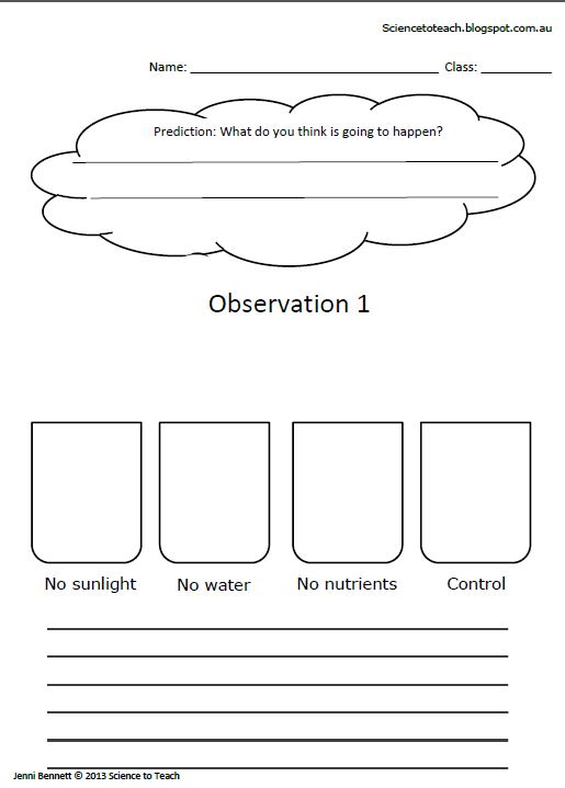 Science to Teach Worksheets to complete the unit on plants for – Plant Needs Worksheet