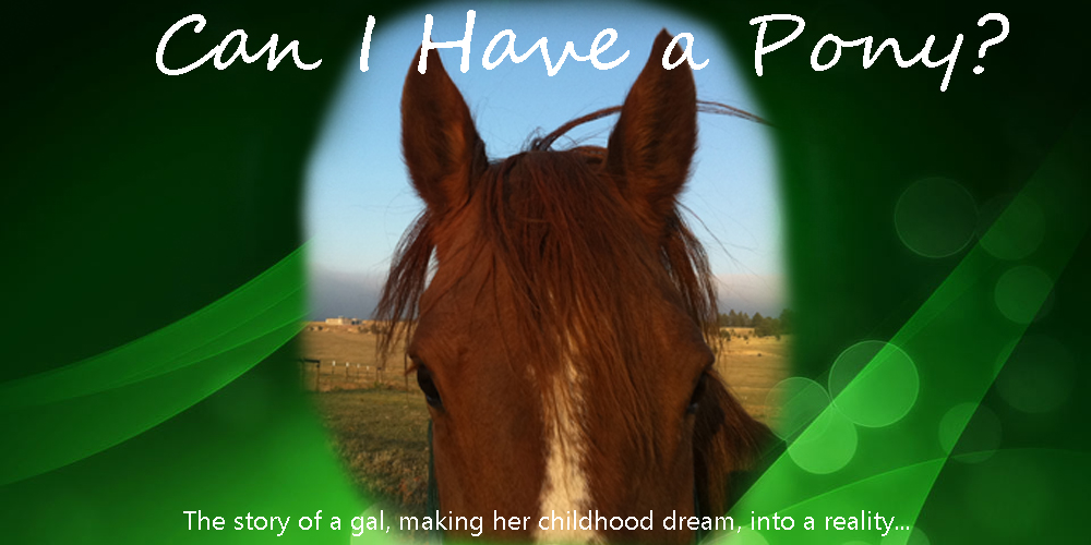 Can I Have a Pony?