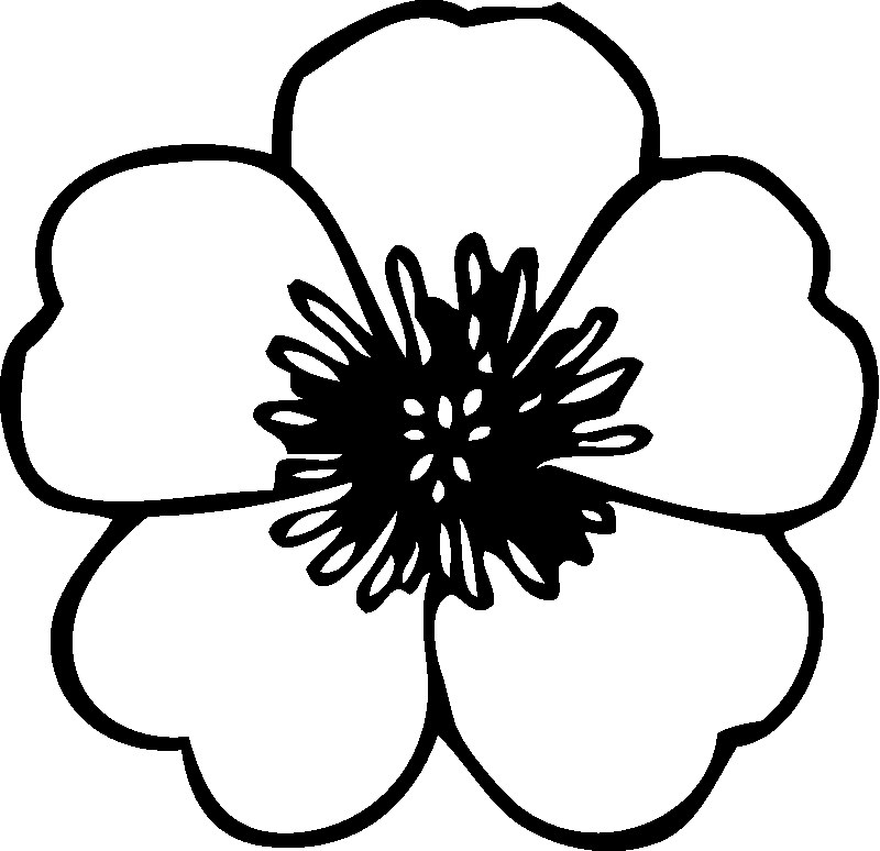 Preschool Flower Coloring Pages Flower Coloring Page Coloring Pages Of A Flower