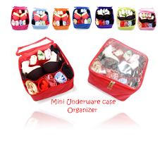 Mini Underwear Oganizer ( MUCO)
