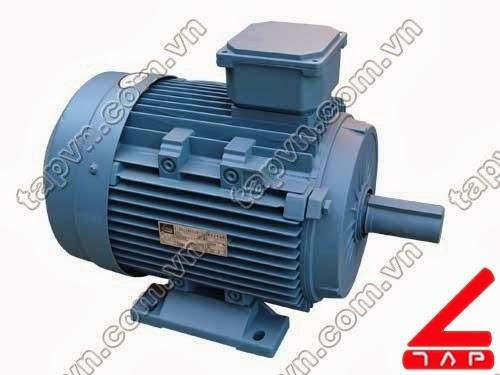 Động cơ điện 3 pha Y3