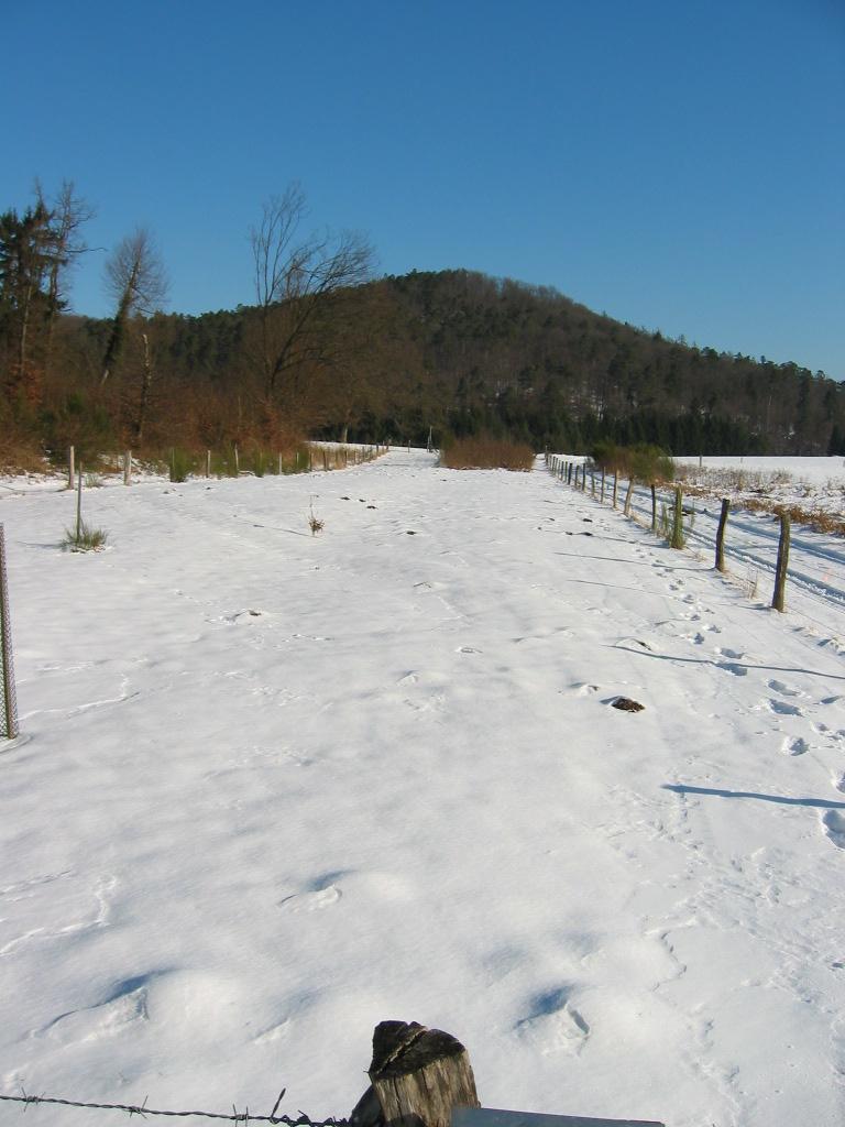 """Wühlmausland"" im Winterkleid"