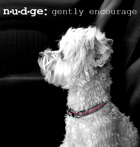 To nudge is to gently encourage. How do you nudge your dog? Try Made In The U.S.A. Nudges premium jerky treats. #NudgesMoments #Shop