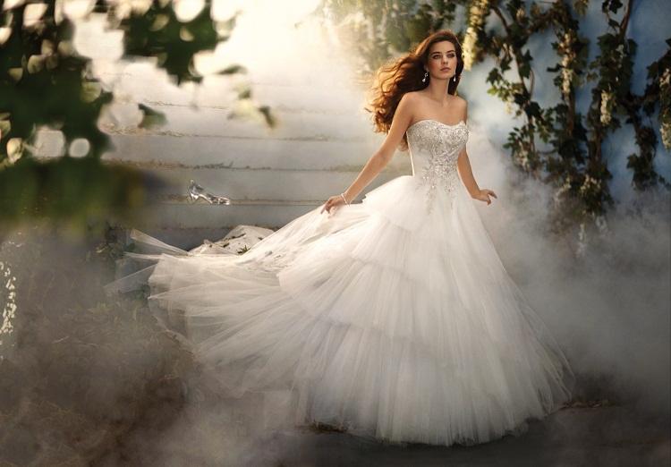 AGED4243Callan: Disney Princess Wedding Dresses