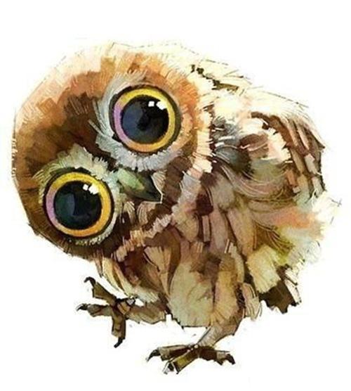 My Owl Barn Illustrations By Chinese Duo Xue Wawa