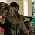 Kenali 8 Jenis Baka Kucing Paling Mahal Di Dunia