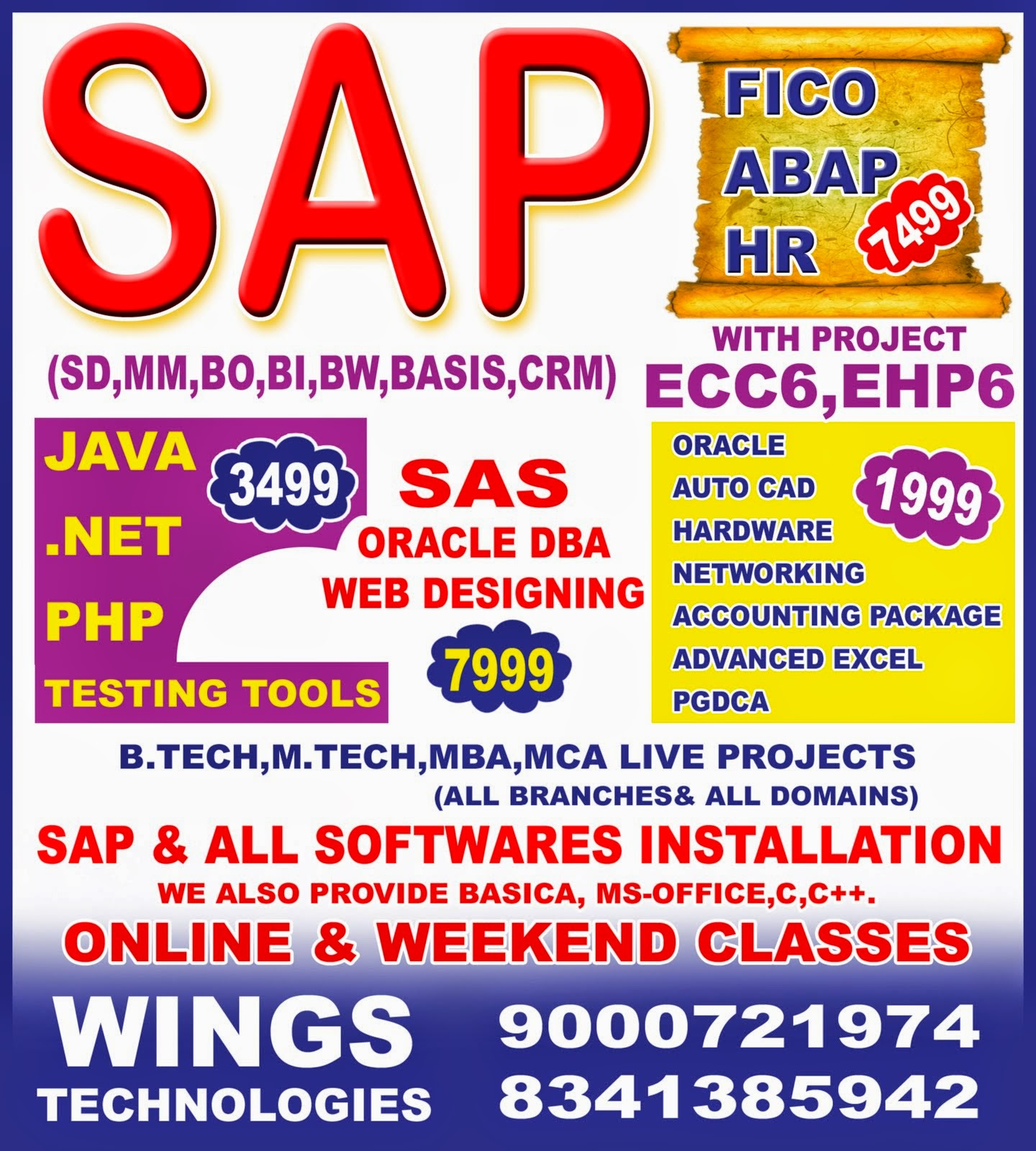 sap trainer resume over 10000 objective or summary on resume
