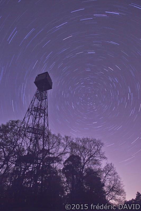 filé étoiles statrail nuit ciel silhouettes forêt