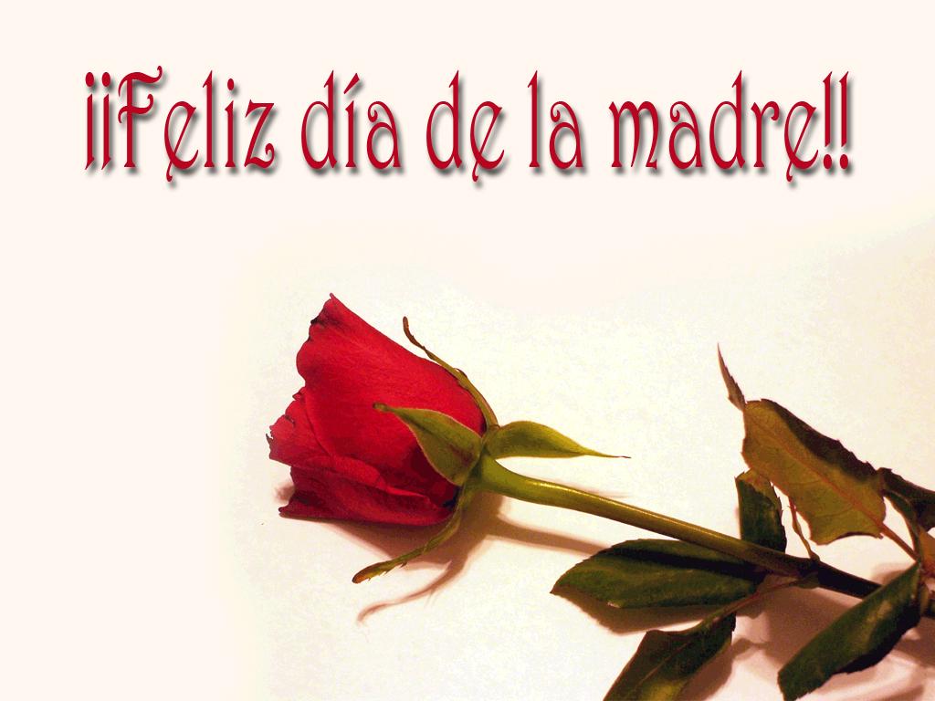 dia de las madres wallpaper -#main