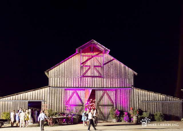 Help me out with ideas for a western glam weddingpretty please pics