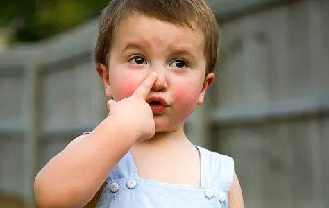 Atividade Lúdica Órgão do Sentido Olfato