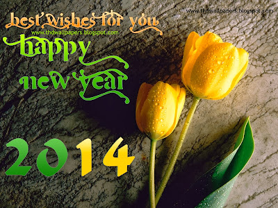 Happy New Year Wishes Greetings Cards Photo Images Wallpapers 2014 Latest