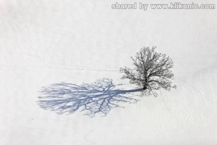 http://1.bp.blogspot.com/-1SgL7NMrJKI/TXVxw7z-GOI/AAAAAAAAQDM/_wnU9Xckup8/s1600/winter_26.jpg