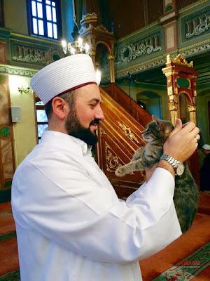 ليالي الشتاء، إسطنبول، مسجد، عالم الغرائب