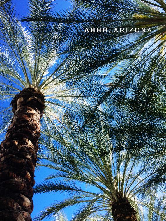 My Arizona Trip, In Photos