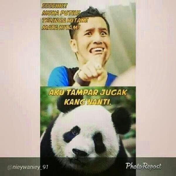 Kisah Panda Yang Bernilai