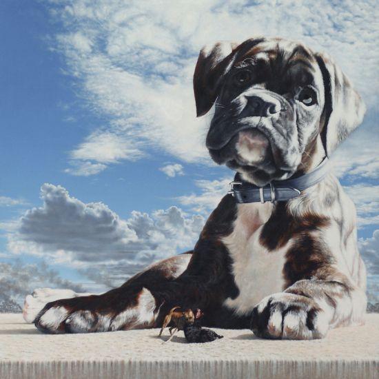 Joel Rea pintura hiper-realista surreal cães gigantes caindo céu História de violência