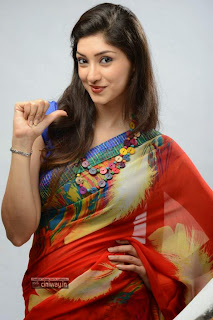 Actress-Tanvi-Vyas-Cute-Stills-in-Saree