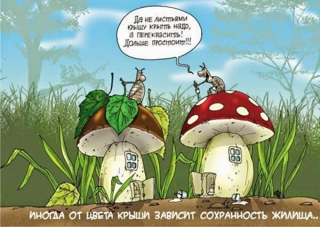Прикольный стих про грибника