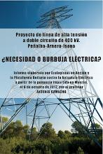 Informe ¿Necesidad o Burbuja Eléctrica?